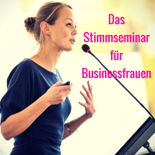 Stimme Seminar Business Ladies Frauen